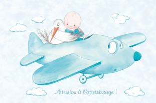 naissance_bebe_dans_avion