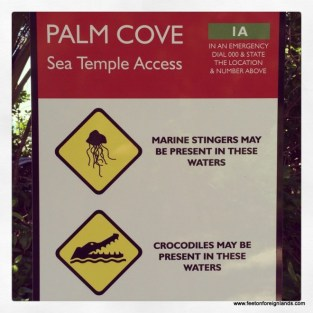 Palm-Cove-signage